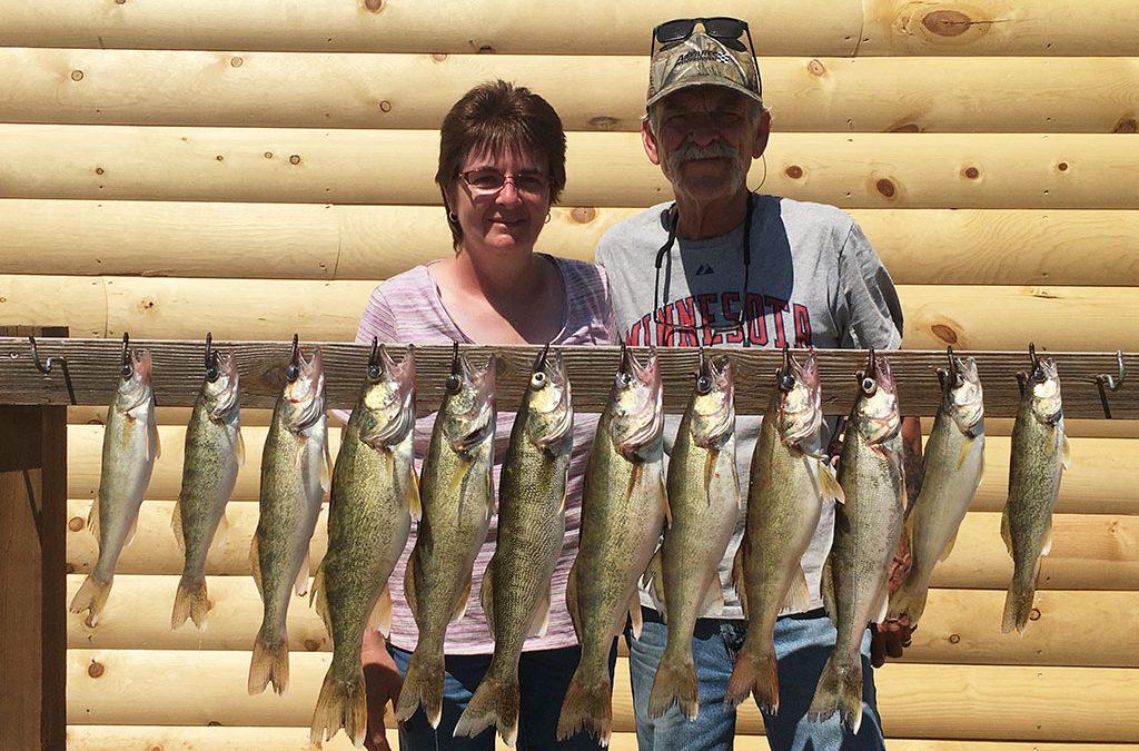 Nice Walleye for Mankato, Minnesota Couple